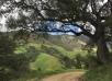 College Acquires 700+ Acres <br>Surrounding California Campus