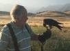 Tutor Dr. Tom Kaiser Rehabilitates, Releases Peregrine Falcon