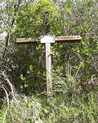 Memorial cross erected near the spot where Angela Baird ('00) died in 1997