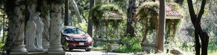 """Photos & Video: """"Drive-Through Stations"""" and Palm Sunday Mass"""