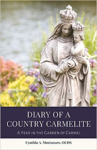 Diary of a Country Carmelite, by Cynthia (Six '77) Montanato