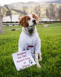 "Rusty, in TAC t-shirt, holding sign that says ""Support TAC Alumni Day of Giving"""