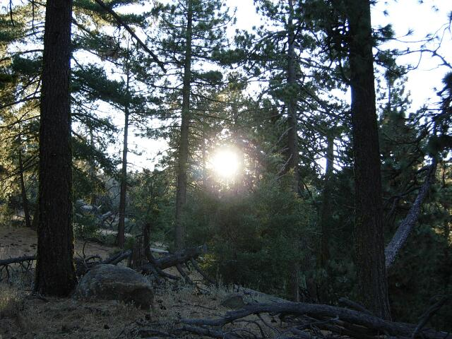 2011 Men's Camping Trip 06