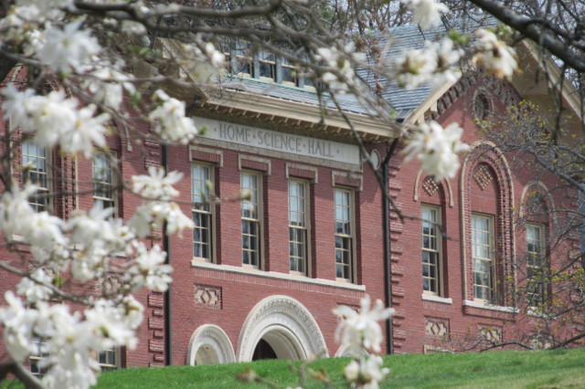 white flowers with Billings Hall in the background