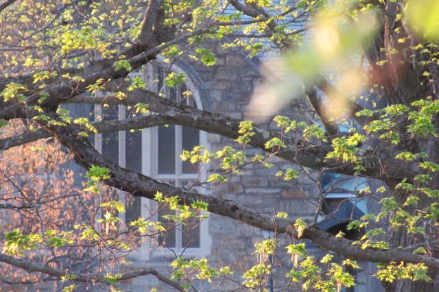 Sage Chapel window
