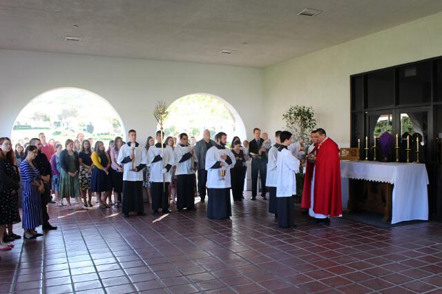 Fr. David blesses the palms.