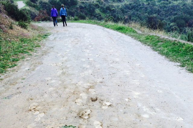 Women's Hike 2015 -- 01
